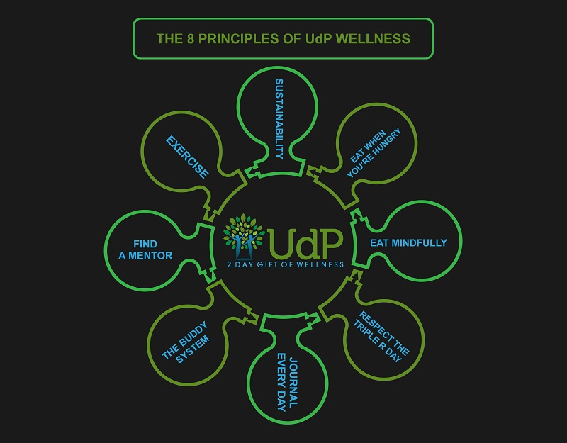 8 Principles of Wellness: The Building Blocks to Health